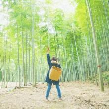 _かぐや姫旅_•_Instagram写真と動画